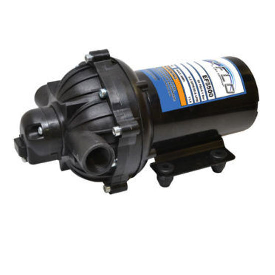 Picture of PUMP 12V EVERFLO 5.5 GPM EV5500