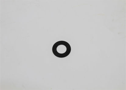 Picture of HYPRO 1700-0100 GASKET